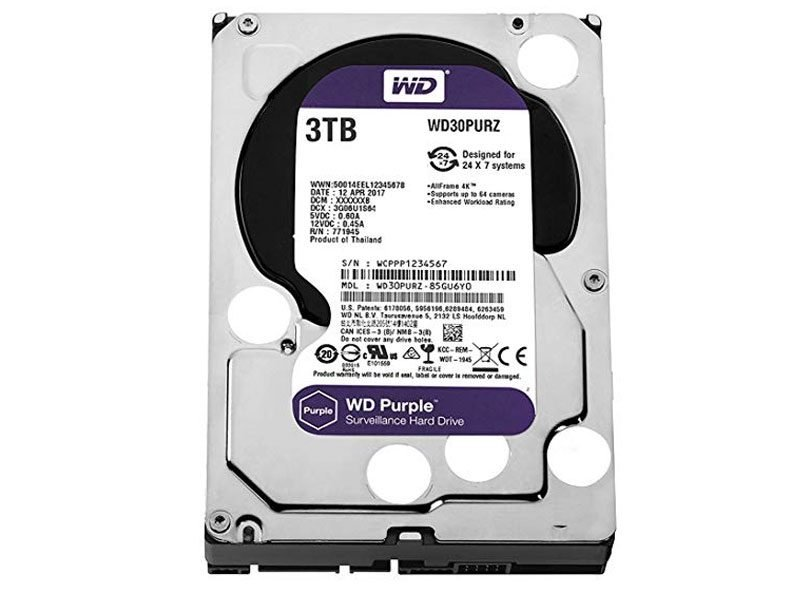 Western Digital WD30PURZ Hard disk 3 Terabyte per videosorveglianza
